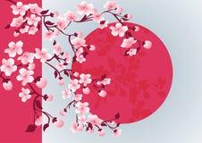 Photo d'art de fleurs de cerisier Arbre de Sakura de vecteur Photo libre de droits