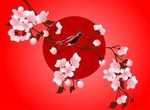 Photo d'art de fleurs de cerisier Fleur de Sakura de vecteur Image libre de droits
