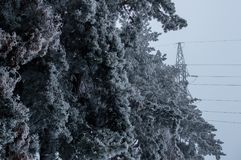 Photo d'hiver de la tour à haute tension de transmission se tenant sur le fond gris de ciel derrière la forêt glacée ensuite Photo stock