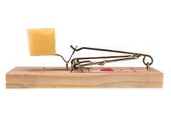 Photo d'un piège de souris avec du fromage comme amorce, concept Images stock