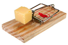 Photo d'un piège de souris avec du fromage comme amorce, concept Images libres de droits