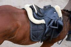 Photo d'une belle selle en cuir de sport sur la concurrence équestre photos libres de droits