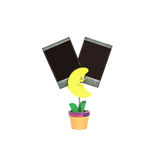 Photo de bride de plan rapproché dans la forme jaune de lune dans le pot de fleurs avec le film vide noir d'isolement sur le fond Images stock