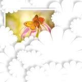 Photo de carte vierge et de guindineau Photographie stock