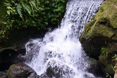 Photo de cascades photos stock