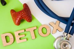 Photo de concept de detox thyroïde Le detox de Word des lettres volumétriques est près de modèle thyroïde 3D et de stéthoscope mé Photo stock