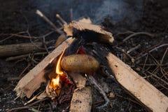 Photo de feu de camp Images libres de droits