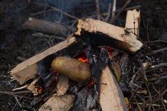 Photo de feu de camp Images stock