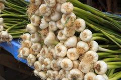 Photo de groupe d'ail dans la boutique de fruits et légumes photos libres de droits