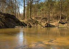 Photo de la rivière traversant la forêt images libres de droits