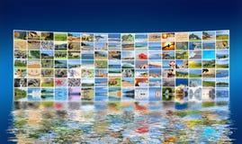 Photo de nature (animal, paysage, plage) Images stock