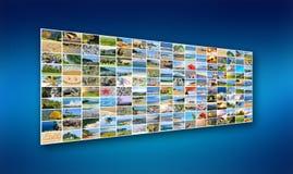 Photo de nature (animal, paysage, plage) Image stock