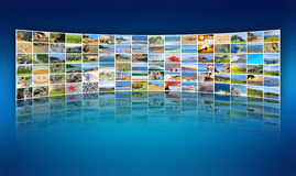 Photo de nature (animal, paysage, plage) Photo stock