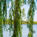 Photo de nature autour de beau lac bleu Images stock