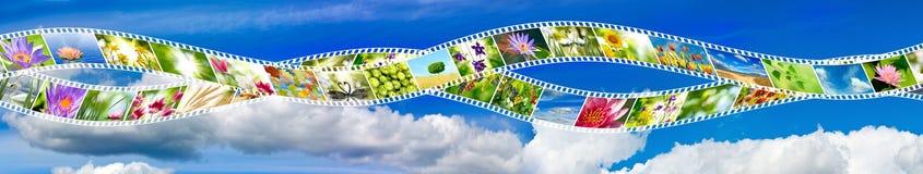Photo de nature sur la bande de photo contre le ciel Photos libres de droits