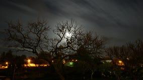 Photo de nuit Images libres de droits