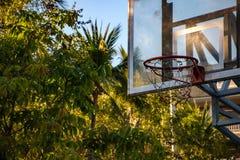 Photo de plan rapproché d'un panneau arrière ou d'un cercle de basket-ball dans le jardin Images libres de droits