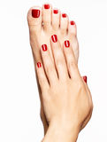 Photo de plan rapproché des pieds femelles avec la belle pédicurie rouge Photo stock