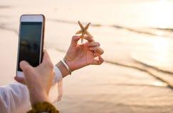Photo de prise femelle d'une étoile de mer sur la plage Images stock