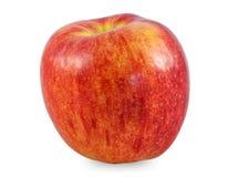 Photo de studio d'Apple Photographie stock