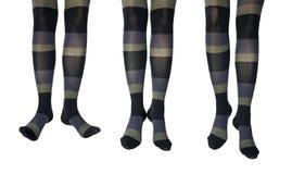 Photo de studio des pattes femelles dans des collants colorés Images libres de droits