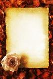 Photo de style de vintage d'une carte de valentines Photographie stock libre de droits
