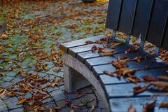Photo de symbole d'automne avec les feuilles d'automne sèches autour d'un banc de parc Photographie stock libre de droits