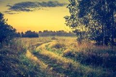 Photo de vintage de paysage vibrant avec le pré brumeux photos stock