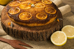 Photo of delicious homemade lemon cake Stock Images