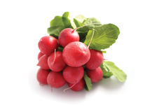 Photo depicting fresh colorful bunch of radishes Stock Photography