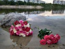 Photo des bouquets roses de roses avec des feuilles sur un lac Chyste images libres de droits