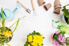 Photo des fleurs dans des pots, arrosoirs, pelle, râteau sur le fond blanc vide Photos libres de droits