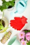 Photo des gants en caoutchouc rouges, fleurs dans des pots, arrosoirs Photographie stock libre de droits