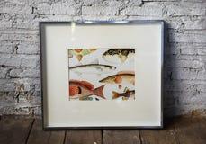 Photo des poissons de dessin de main dans un cadre Images stock