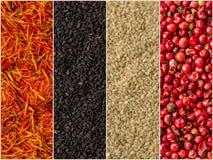 Photo des rayures colorées de mélange avec des milieux d'épices Image stock