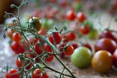 Photo des tomates-cerises Photos libres de droits