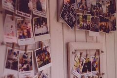 Photo display Stock Photography