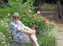 Gentleman in garden wearing summer panama trilby hat flowers roses seat bench. Photo of a distinguished gentleman wearing a summer panama hat enjoying the royalty free stock photos