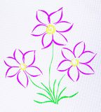 A photo of a drawing of three flowers on a tablet. Stock Photo