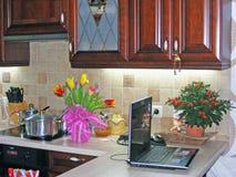 Photo du rouge meublé ordonné intérieur de cuisine en bois spacieuse photo libre de droits