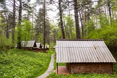 Ecological hotel cabins in woods. Royalty Free Stock Photos