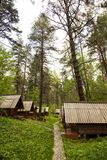 Ecological hotel cabins in woods. Royalty Free Stock Images