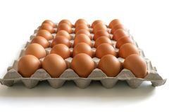 Eggs in the egg tray. Photo of eggs in the egg tray stock photos