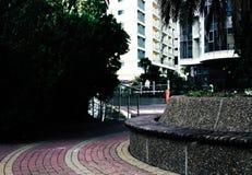 Photo of Empty Pathway Near Trees Royalty Free Stock Photos