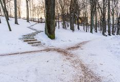 Photo of an Empty Walkway in Park in Alley on Sunny Winter Evening. Concept of Sadness and Loneliness stock image