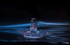Photo en cristal de cygne Images stock
