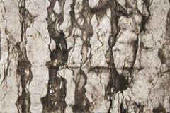 Photo en gros plan de mur en pierre antique blanc et noir naturel images stock
