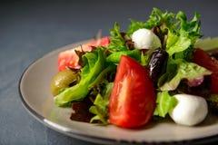 Photo en gros plan de salade fraîche de vitamine de ressort Images stock