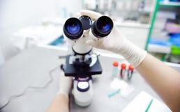 Photo en gros plan des mains de scientifique avec le microscope, Sam de examen photos libres de droits