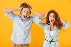 Photo of excited couple man and woman 20s in basic clothing screaming and grabbing heads, isolated over yellow background stock image